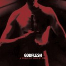 HAVE YOUR WORLD LIT ONLY BY FIRE -- GODFLESH'S NEW ALBUM IS STREAMING
