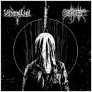 SHORT BUT SWEET:  WITHERING LIGHT AND BARGHEST -- A SPLIT