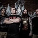 AN NCS INTERVIEW:  DISENTOMB