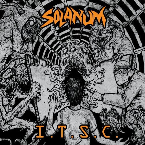 Solanum-ITSC