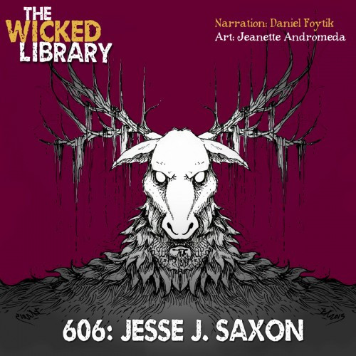 The Wicked Library cover