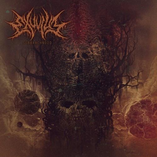 Exuvium-Subarachnoid