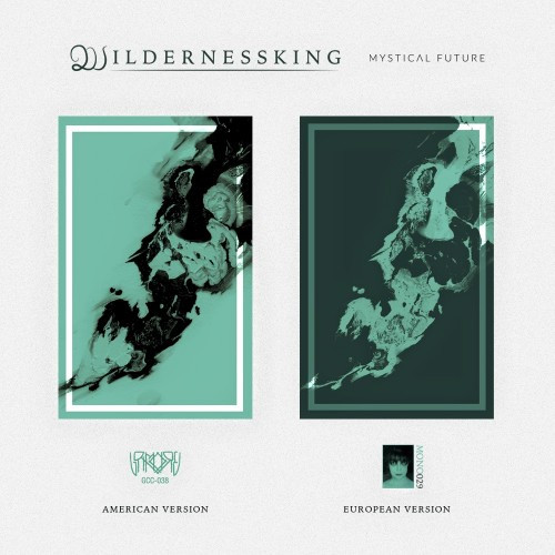 Wildernessking-Mystical Future cassettes