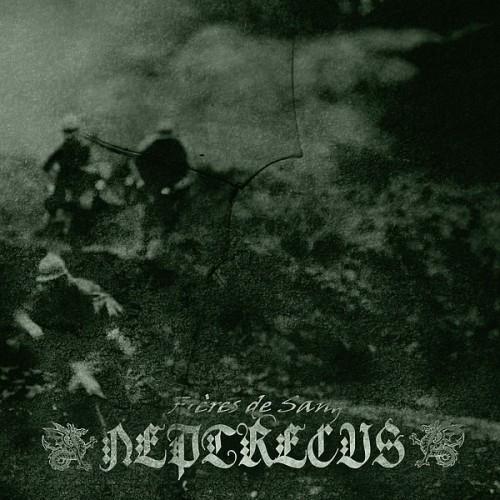 neptrecus-cover