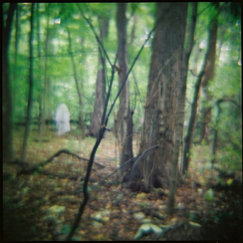 Moon Curse-Seminary Woods