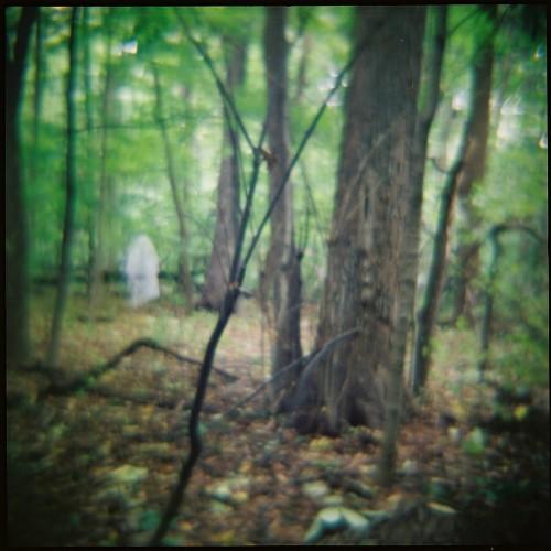 Moon Curse-Seminary Woods