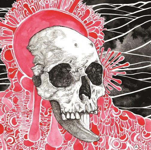 Michel Anoia-Plethora Cover