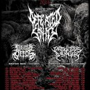 SHOW REVIEW: DEFEATED SANITY, INIQUITOUS SAVAGERY, INIQUITOUS DEED (AT THE NEW VINTAGE, LOUISVILLE KENTUCKY, FEB. 1, 2016)