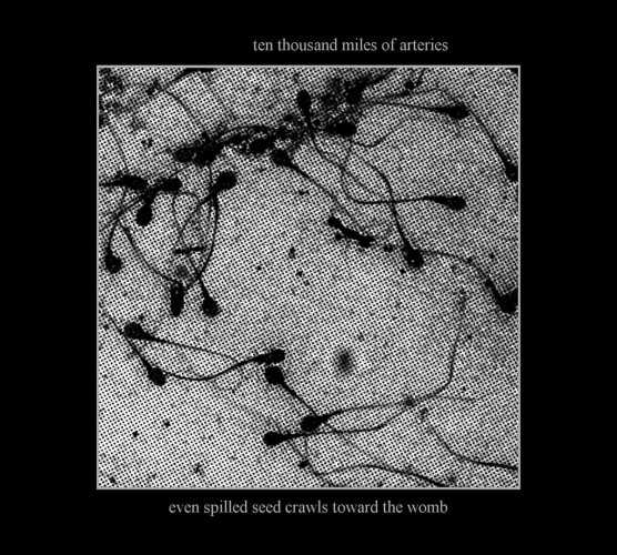 ten thousand miles of arteries-even seed spilled