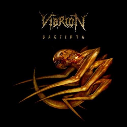 Vibrion-Bacterya