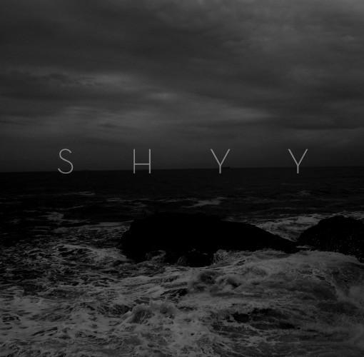 Shyy-Demo 2016