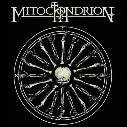Mitochondrion art