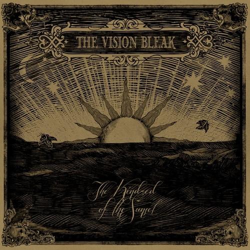 vision_bleak
