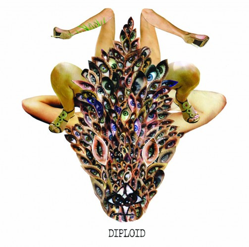 Diploid-Is God Up There