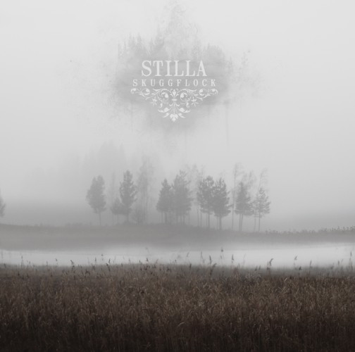 Stilla-Skugflock
