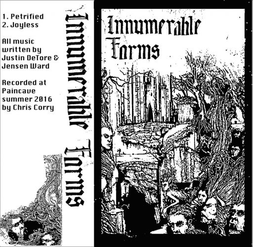 innumerable-forms-2016