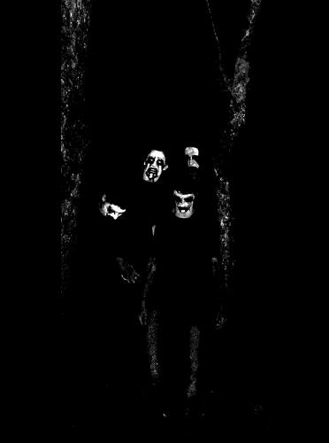 vpaahsalbrox-band