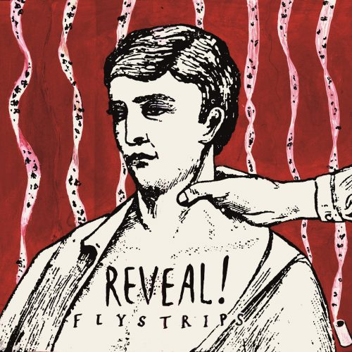 reveal-flystrips