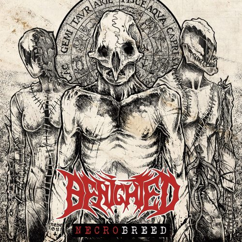 SEEN AND HEARD (PART 1 OF 3): BENIGHTED, REAPING ASMODEIA