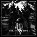 AN NCS ALBUM PREMIERE (AND A REVIEW):  WŸNTËR ÄRVŃ -